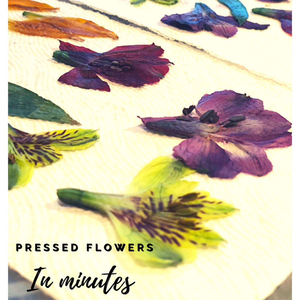 How To Quickly Press Flowers