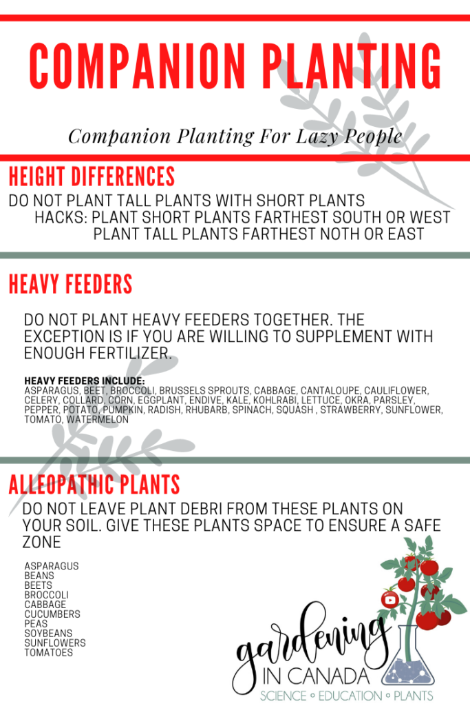 Does Companion Planting Matter